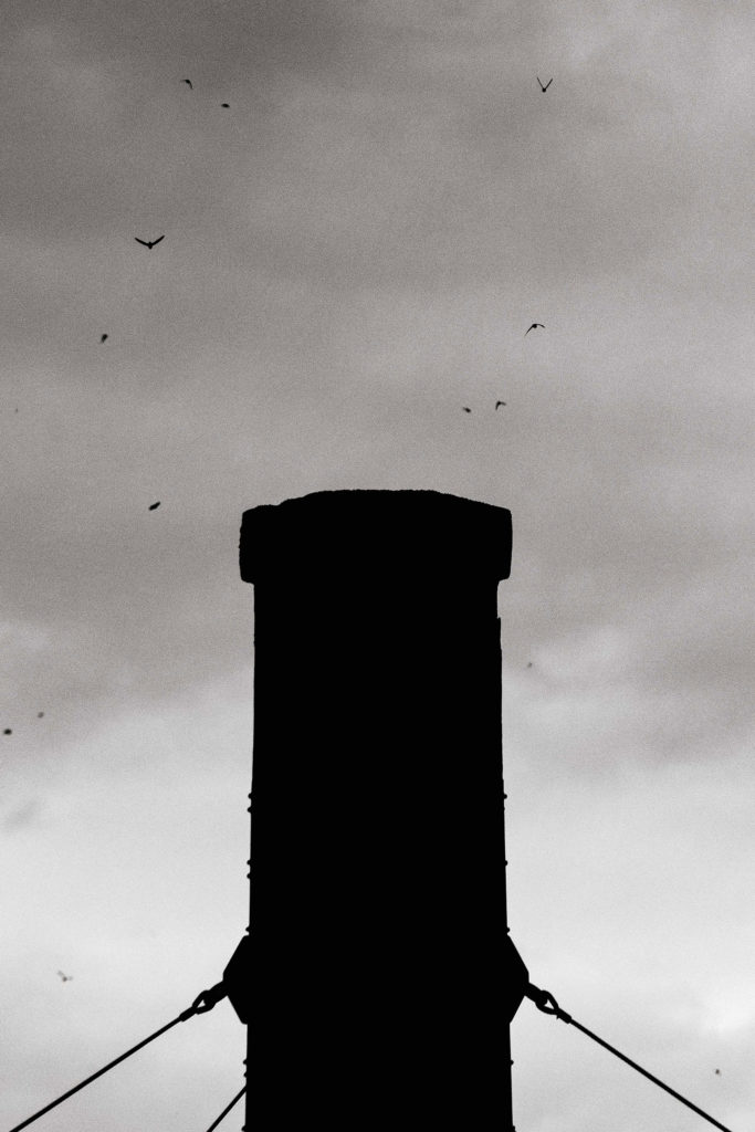 A close up of the chimney at Chapman Elementary School where the Vaux's Swift roost in before migrating for the winter.